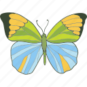 bug, butterfly, ecology, insect, nature icon