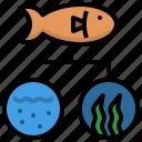 data, ecology, fish, habitat, niche