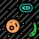 becteria, creature, monster, organism, parasite icon