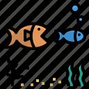 ecology, fish, food, predation, prey icon