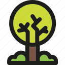ecology, enviroment, forest, green, nature, plant, tree icon