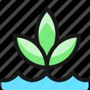 organic, plant, grow