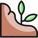 organic, tree