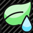 organic, watering, plant