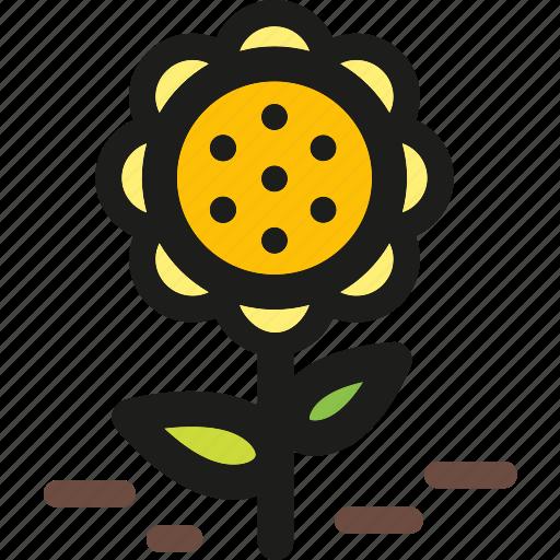 decorative, flower, flowers, plant, shape, spring icon