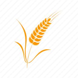 cereal, eco, ecology, environmental, grain icon