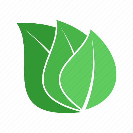 ecological, environmental, foliage, leaf icon