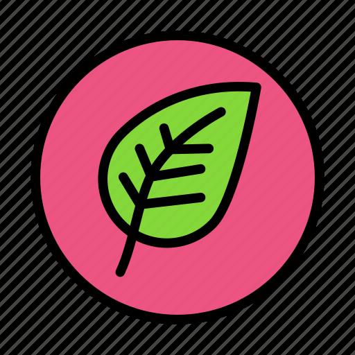 leafround icon