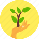 ecology, environment, green, hand, leaves, nature, plant icon