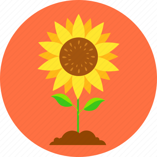 Eco, ecology, environment, leaves, nature, plant, sun flower icon - Download on Iconfinder