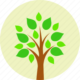 eco, ecology, environment, leaves, nature, plant, tree icon
