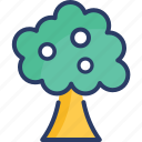 ecology, forest, gardening, nature, park, summer, tree icon