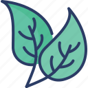 ecology, environment, leaf, leaves, natural, nature, plant icon