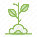 ecology, ecosystem, environment, environmentalism, plant, seed, tree icon