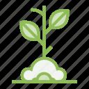 ecology, ecosystem, environment, environmentalism, plant, seed, tree icon