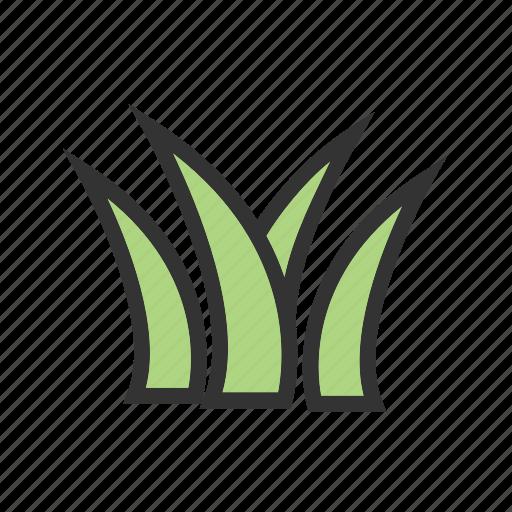 decoration, garden, grass, nature, plant, pot, spring icon