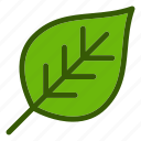 eco, ecology, environment, leaf, nature icon