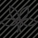 herb, leaf, organic, plant icon