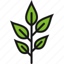 agriculture, cultivation, faming, growth, leaves, nature, tillage icon