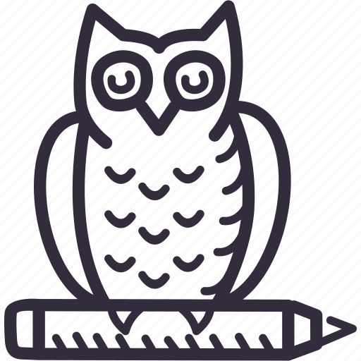 education, learning, owl, preschool, school, study icon