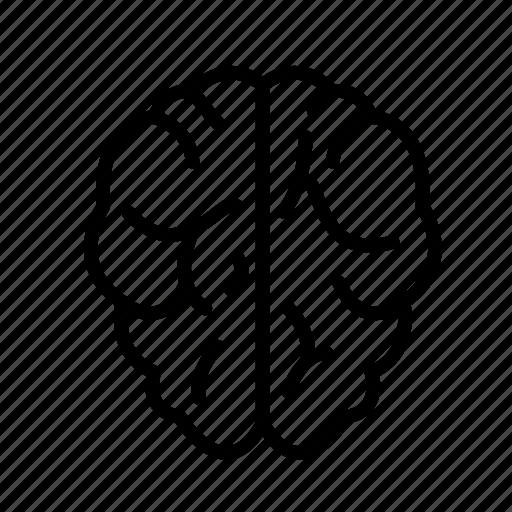 Brain, intelligent, smart icon - Download on Iconfinder