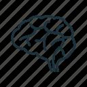 anatomy, brain, brainstorming, mind, neuroscience icon