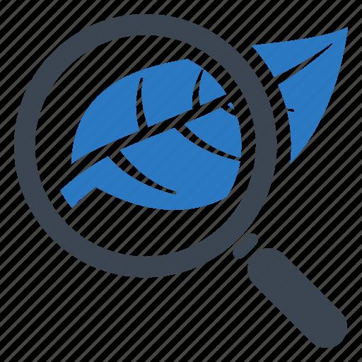 Biology, leaf, research icon - Download on Iconfinder