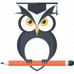 bird, education, intelligence, knowledge, owl, school, wisdom icon