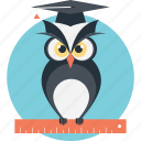 graduate owl, owl education, owl teacher, wisdom, wise icon