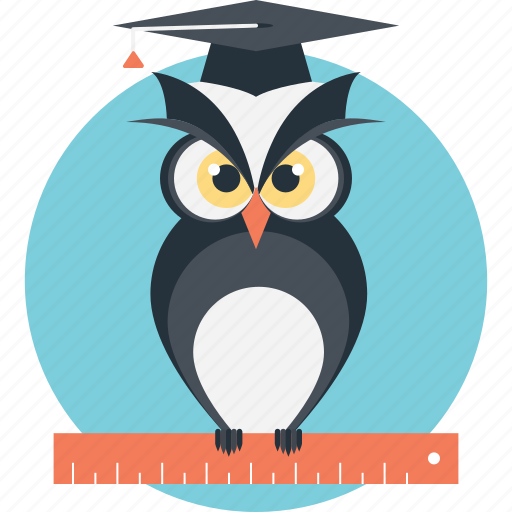 graduate owl, owl education, owl teacher, wisdom, wise icon