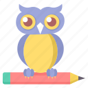 class, classroom, owl, smarclass, smartclasses, teacher icon