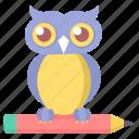 classroom, owl, smartclasses, class, smarclass, teacher