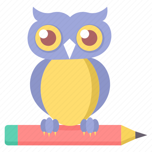 Class, classroom, owl, smarclass, smartclasses, teacher icon - Download on Iconfinder
