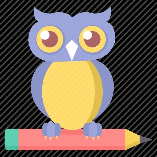 class, classroom, owl, smarclass, smartclasses, teacher icon
