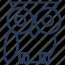 bird, college, education, learn, owl, school, study icon
