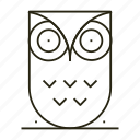 line, owl, school, study, university icon