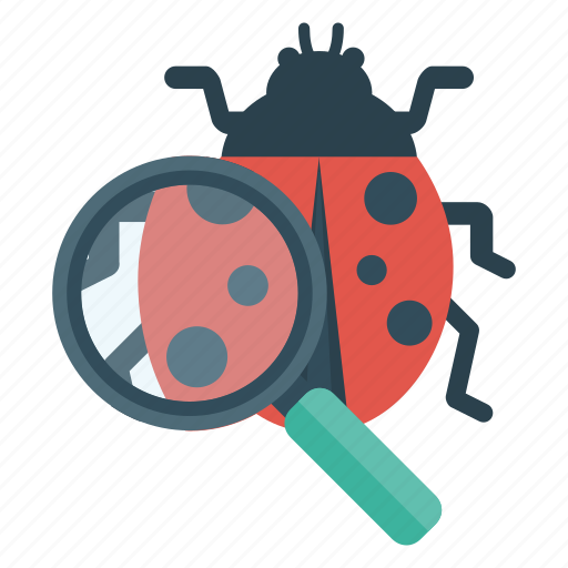 beetle, bug, education, magnifying, science icon