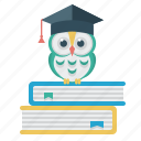 owl, student's cap, books, education, science