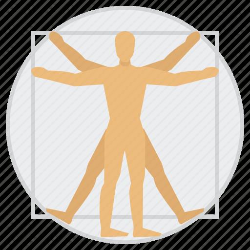 education, man, science, vitruvian icon