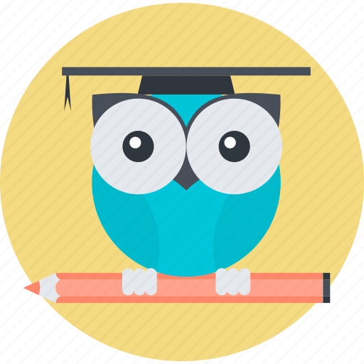 education, flat design, knowledge, owl, round, smart, solution icon