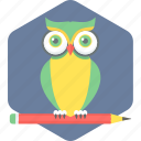 owl, owl teacher, teacher icon