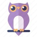 bird, knowledge, owl icon