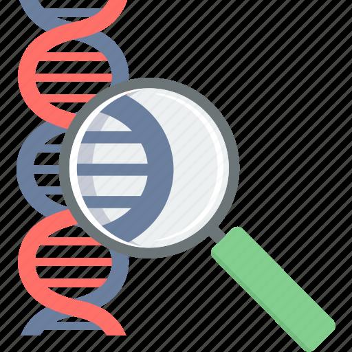 dna, genetics, healthcare, medical, molecule, science icon