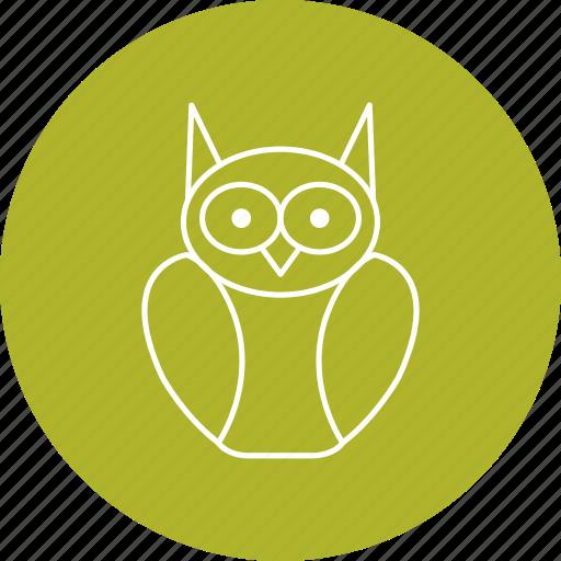 degree owl, graduation, owl icon