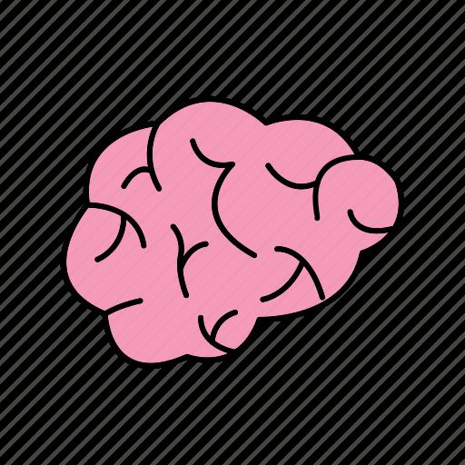 brain, idea, mind icon