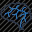 brain, brainstorm, neuroscience icon