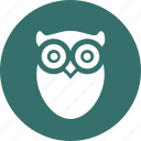 education, learn, learning, owl, reading, study icon