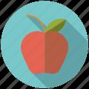 apple, college, education, food, fruit, healthy eating, school