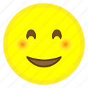 emoji, eyes, face, happy, hovytech, smiling icon