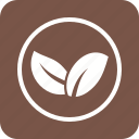 environment, leaves, nature, plants icon